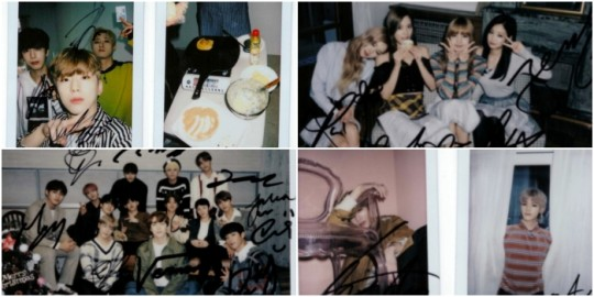 Idols' beautiful memories on Star Road kept in polaroids